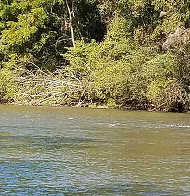 smith-river-fest